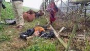 ঠাকুরগাঁও ধর্মগড় সীমান্তে বিএসএফের গুলিতে বাংলাদেশি নিহত