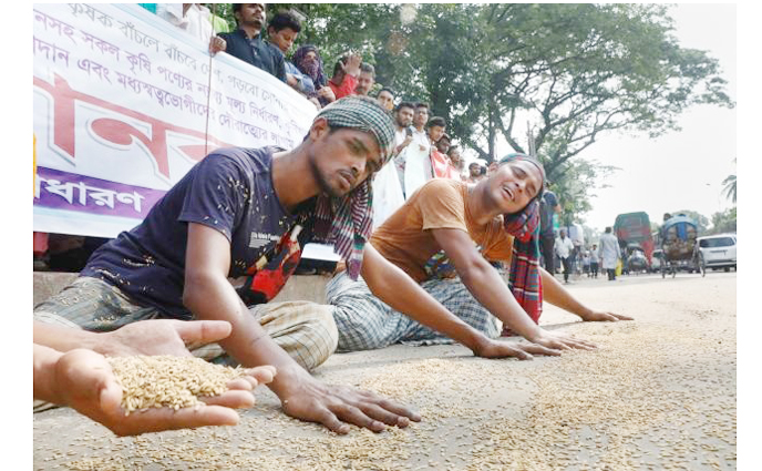 জাতীয় প্রেসক্লাবের সামনে ধান ছিটিয়ে  প্রতিবাদ, সরকারের সু দৃষ্টি চায় কৃষকরা