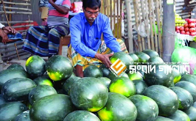 রাজশাহীর বাজারে গরমের ফল তরমুজ